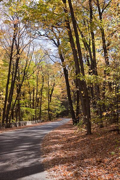 Autumn in Devil's Lake State Park