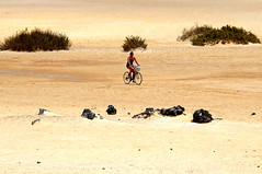 Chapter 7 - Corralejo, the unbereable lightness of the desert (#7): Lost (stedef) Tags: lost spain sand niceshot desert fuerteventura dune ciclista biker canaryislands spagna deserto sabbia corralejo canarie perduto oltusfotos mygearandme playasgrandes