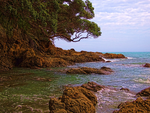 Pacific Coast (1)
