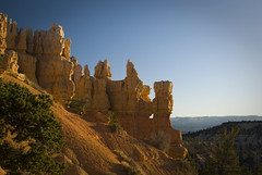 Good Morning Hoodoos!