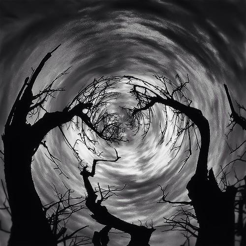 135/365- Spooky by elineart