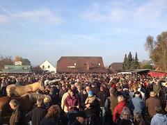 Brockumer Markt