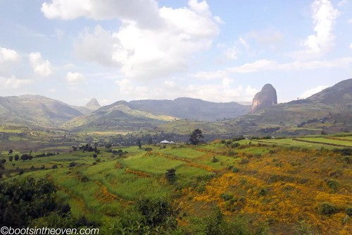 Verdant countryside