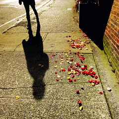 Beauty is the shadow of God (Explored) (. Jianwei .) Tags: street shadow red flower vancouver square concrete heart candid streetlife crack petal 365 a500 jianwei gabrielamistral kemily beautyistheshadowofgod