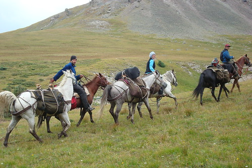 111110 Packing horses through the backcountry