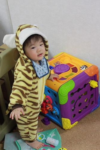 虎の着ぐるみを着るとらちゃん