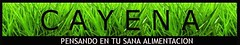 http://www.cayena.cl