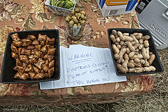 Warning (Jersey JJ) Tags: horse race peanuts hills pretzels farms far hunt steeplechase the moreland bartenter