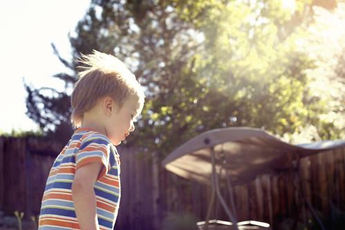 backyardboy