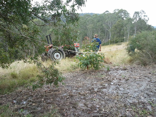 tractor attaching to the rope to the tree