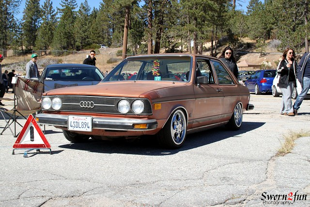 Audi-Fox