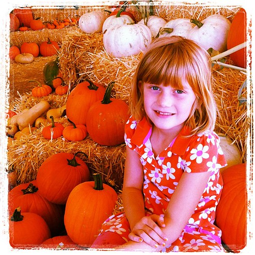 Getting some pumpkins to decorate with. by kimberly.kalil