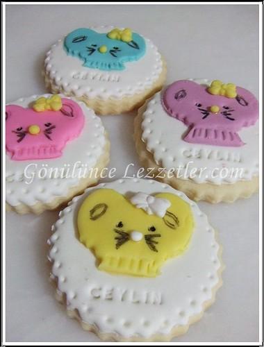 doğum günü kurabiyeleri 4