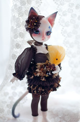 (mercer_spb) Tags: cat doll handmade bjd limited pipos ocharlotte