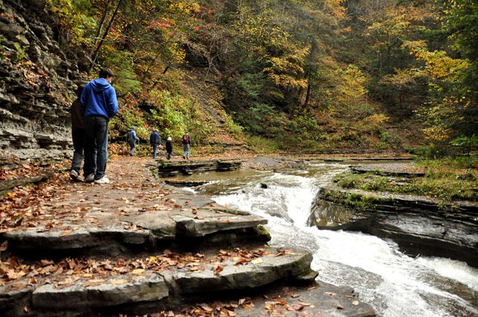 fall walk35