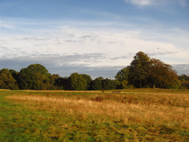The Tumulus Field