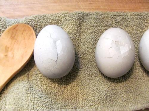 Martha Stewart's Halloween Spiderweb Eggs