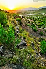 Gravel Ridge (Omer Jamal Cheema) Tags: sunset nikon hill bushes islamabad margallahills d5000 dsector hillshope
