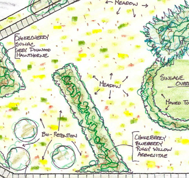 detail of restoration site plan (via Buffalo Rising)