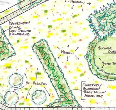 detail of restoration site plan (via Buffalo Rising)