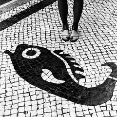 Girl and fish - Macau (ndnbrunei) Tags: china blackandwhite bw 120 6x6 tlr film rollei mediumformat cord kodak streetphotography bn mf macau xenar rolleicord portugese classicblackwhite analoguephotography rolleigallery ndnbrunei tmy2 kodak400tmy2 50yearoldcamera ilovemyrolleicord
