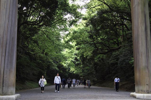 110514_143025_東京_明治神宮