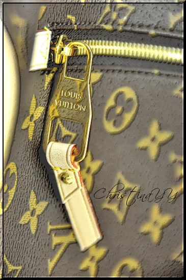 Louis Vuitton Monogram Canvas Delightful GM