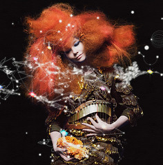 Bjrk - Biophilia (The Album Artwork Archive) Tags: music art yahoo dvd google artwork album cd band vinyl archive free itunes bands cover musica muziek record bjork booklet bjrk musik msica albumart sleeve muzyka musique hudba facebook musikk insert jewelcase zene cerddoriaeth ceol musika   musiikki  glazba youtube  digipak mizik tnlist mzik  muzika  muusika  musiek muziki biophilia    glasba mzika muzic mnhc  ryanlehmann albumartworkman1  albumartworkman muika albumartworkarchive