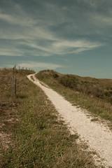 _MG_1569 (danieltreek) Tags: sun holiday holland beach nature water netherlands strand landscape see wasser sommer urlaub natur landschaft sonne nordsee niederlande northsee erholung