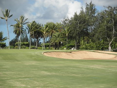 Turtle Bay Colf Course 130