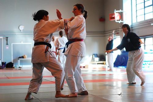 6299420195 3e5d38e818 London & Hove Shodokan Aikido Festival 2011