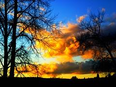 Sunset delight (peggyhr) Tags: blue trees friends sunset sky orange white canada black yellow clouds grey bc silhouettes goldenhour quesnel naturesfinest 50faves sunbest natureplus peggyhr flickrbronzeaward heartawards landscapesdreams afeastformyeyes 100commentgroup artofimages flickraward handselectedphotographs mygearandme carouseloflight nossasvidasnossomundoourlifeourworld arncioornge blinkagainforinterestingimages bestofblinkwinners redgroupno1 stimmungendersonne blinkagainsuperstars blinksuperstar yellowgroupno2 blinksuperstars soloastroreisunthestarking p1070713ap