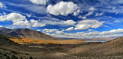 Lake Crowley Panorama (Explored 11/2/2011) (Dave Toussaint (www.photographersnature.com)) Tags: california ca travel blue autumn sky panorama usa cloud lake tree fall nature water photoshop canon landscape photo interestingness interesting october day skies photographer cs2 wide picture screen panoramic sierra hwy explore adobe cumulus multiple northern polarizer sierranevada eastern crowley adjust easternsierras highway395 polarizing 2011 autopanopro denoise 60d topazlabs photographersnaturecom davetoussaint