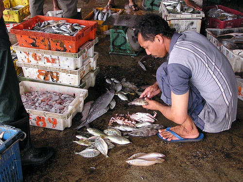 Fish processing, Malaysia. Photo by Hong Meen Chee, 2005