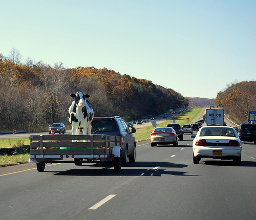 On the Highway