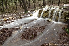 Fonts Ufanes (3), #mallorca (@potti) Tags: festa mallorca aigua magia lloc campanet gabelli fontsufanes