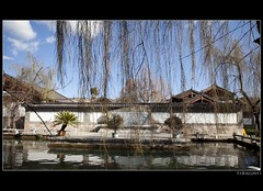 08 (Fibi's) Tags: china architechture yunnan lijiang 2011 mufu