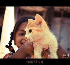 hello kitty (swarat_ghosh) Tags: portrait pet india girl smile cat 50mm kid nikon asia pretty affection joy kitty happiness laugh 1855mm karnataka bonding bidar hws kidphotography relation d3000 swaratghoshphotography
