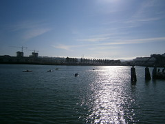 Kayakers in McCovey Cove (Eric Broder Van Dyke) Tags: sf sanfrancisco fall kayakers mccoveycove 2011