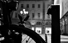 Piazza San Carlo, Turin (Eleonora D'Agostino) Tags: blackandwhite club torino nikon bokeh it turin fontain fontana piazzasancarlo biancoenero toret d3100