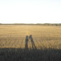 Shadows taller than our souls (janetzep65) Tags: lighthouse lilly millcreek chincoteague tuxy fenwickmines nitrowv marchapril2012