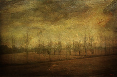 The upside world (Gianmario Masala) Tags: trees italy plants painterly milan nature colors rural photomanipulation photoshop landscape countryside photo textures photograph processing textured motat gianmario tatot gianmariomasala bestcapturesaoi magicunicornverybest magicunicornmasterpiece tripleniceshot elitegalleryaoi mygearandme mygearandmebronze mygearandmesilver mygearandmegold mygearandmeplatinum ringexcellence dblringexcellence tplringexcellence 4timesasnice