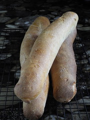 Poolish baguettes
