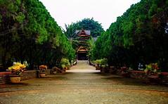 "Palace Gardens <a style=""margin-left:10px; font-size:0.8em;"" href=""http://www.flickr.com/photos/58097856@N04/5904037609/"" target=""_blank"">@flickr</a>"
