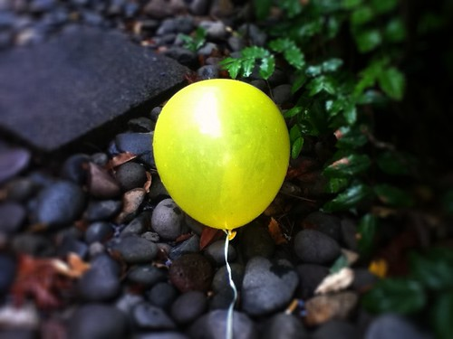 balloon by Nature Morte