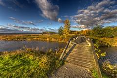 Autumn Scape IV (h3k0h3k0) Tags: photoshop canon eos dc sigma hdr 816 photomatix hsm 550d cs5 t2i