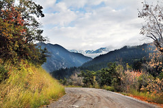 headed down from silver lake flats dirt road (houstonryan) Tags: autumn art fall print landscape photography utah october driving photographer ryan houston first fork canyon photograph american week 2011 phtoograph houstonryan