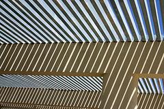light and shadow II (Dieter Drescher) Tags: light shadow sun texture licht pattern sonne schatten muster lightandshadow lichtundschatten dieterdrescher