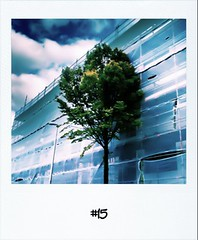 """#Yesterdays #dailypolariod #15 #fb • <a style=""""font-size:0.8em;"""" href=""""http://www.flickr.com/photos/47939785@N05/6244944020/"""" target=""""_blank"""">View on Flickr</a>"""