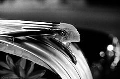 1950 Pontiac Hood Ornament - Nikon FE - Nikkor-SC 55mm F/1.2 - TMAX 3200 (divewizard) Tags: auto california blackandwhite bw white black blancoynegro film blanco car analog sedan 35mm criollo restaurant blackwhite analgica nikon tmax3200 y kodak tmax negro el voiture 55mm ornament coche hood pontiac fe cuban 3200 nikonfe coches rincon culvercity f12 pelcula blackwhitephoto losangelescounty blackandwhitephoto cubanrestaurant autombile blackandwhitephotos blackwhitephotos y44 nikkorsc ncps chrisgrossman 55mmf12sc elrinconcriollo 90230 northcoastphotographicservices nikkorsc55mmf12 nikkorsc nikkorsc55mmf12 5gyn319
